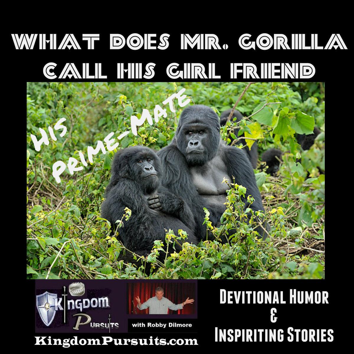 Devotional Humor And Inspiring Stories for June 15, 2017